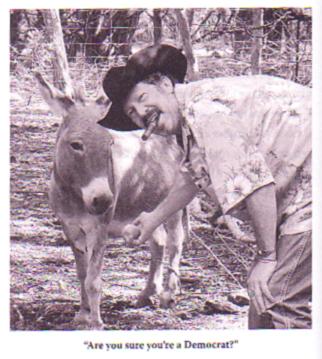 Kinky and donkey