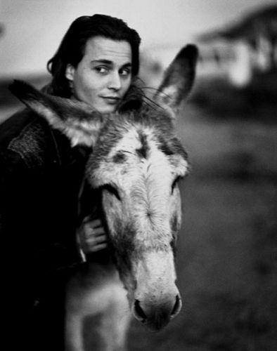 Depp & Donkey